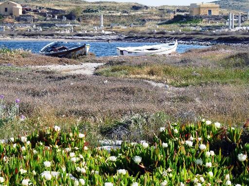 Delos boats