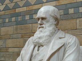 The theory of evolution - Darwin