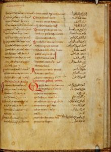 the-harley-trilingual-psalter